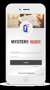 Mystery Audit - náhled