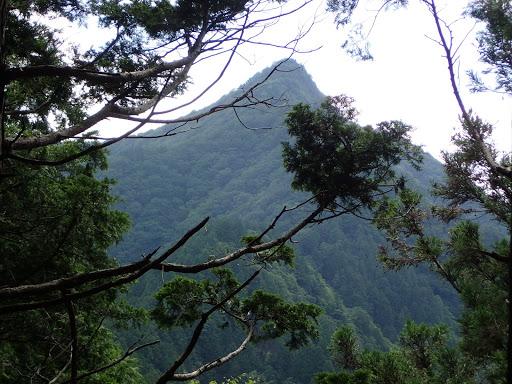 前方に尖った白鬚岳