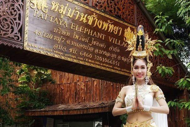 Elephant Village in Pattaya