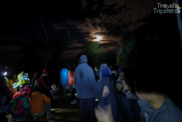 mt pulag camp 1
