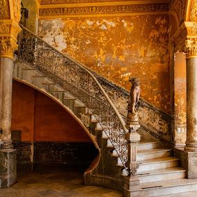 Paladar La Guarida by Chris Seaton - Buildings & Architecture Other Interior ( interior, spiral staircase, staircase, architecture, havana, decay,  )
