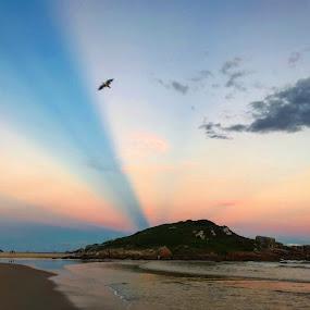 Aurora Boreal on the beach by Mylene Rizzo - Landscapes Beaches ( sunset, beach, brasil, sun, summer )