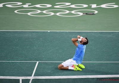 Del Potro blijft de verrassing van het toernooi en gaat voorbij Nadal naar finale