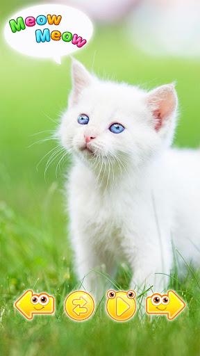 可愛い 動物 赤ちゃん 画像 - 動物 の 鳴き声