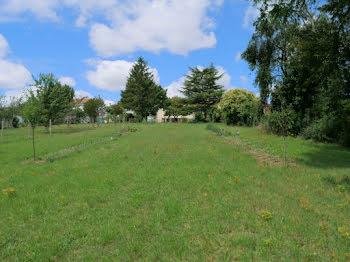 terrain à Castillonnès (47)