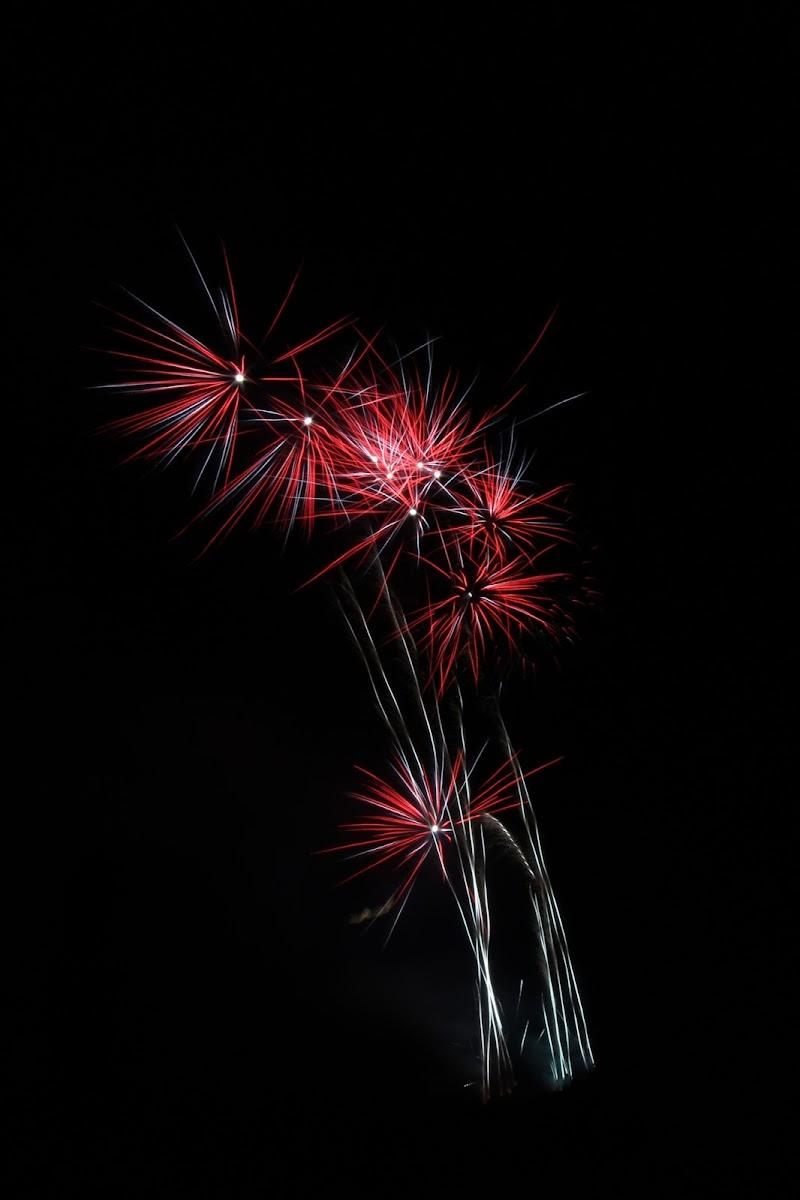 Fireworks  di Suttins