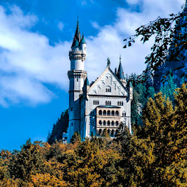 Castle in the air by Pravine Chester - Buildings & Architecture Public & Historical ( building, germany, castle, historical, architecture )