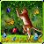 Funny Monkey Live Wallpaper file APK Free for PC, smart TV Download
