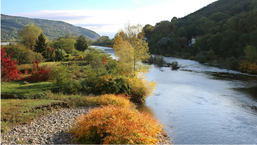 En Ardèche, proche de la sortie autoroute Loriol, votre magasin bio , produits locaux  et végétariens