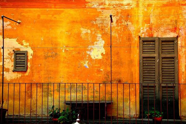 l'orangerie di AlessandroDM