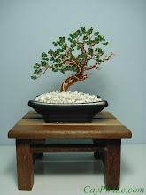Photo: - Mã 7.A (Bonsai) - 1.100.000 đ. - Kích thước tham khảo 12 x 10 cm. - Sử dụng hạt pha lê Swarovski Elements. - Cây được đặt trong hộp mica trong.