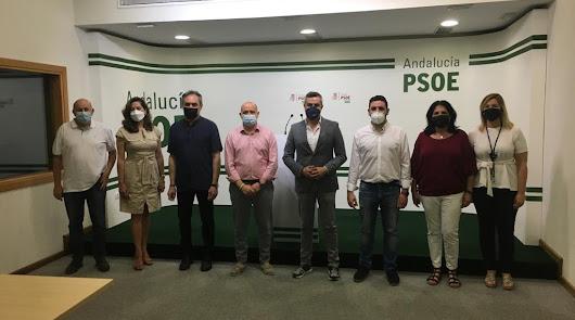 Caso mascarillas: el PSOE pedirá un Pleno extraordinario en Diputación