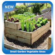 Small Garden Vegetable Ideas