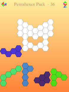 Download Tangram & Polyform Puzzle For PC Windows and Mac apk screenshot 12