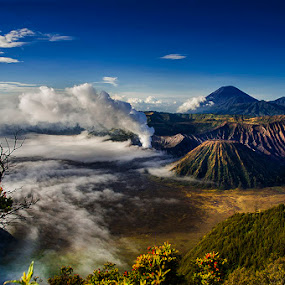 Mount Bromo by Erry Subhan - Landscapes Mountains & Hills ( sand, probolinggo, mount bromo, mount batok, tourism, travel, volcano, bromo tengger national park, indonesia, east java, asia, rain forest, java, bromo, eruption )