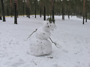 Photo: Хреновая нынче зима!