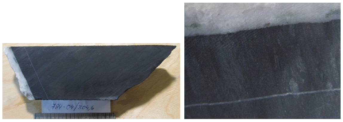 Кварц-карбонатный прожилок с хлоритом и сфалеритом в алевропесчанике