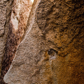 Rock face by Vikram Kattoju - Novices Only Objects & Still Life ( face, nise, brown, rock, eyes )