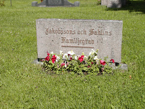 Photo: The Jakobssons and Sahlins family grave stone - June 2002