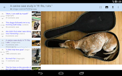 screenshot of reddit is fun golden platinum (unofficial)