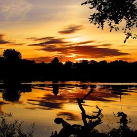 That Golden Time Of Day by Howard Sharper - Landscapes Sunsets & Sunrises ( golden hour, reflections, sunset, cloudscape, riverside,  )