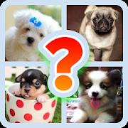 Dog Breed Quiz Game (Dog Game)