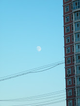 Photo: an early moon appear in bright dusk near QRRS' skyscraper in eastern Qiqihar.