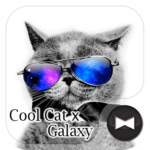 Stylish Wallpaper Cool Cat x Galaxy Theme Icon