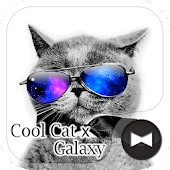 Stylish Wallpaper Cool Cat x Galaxy Theme