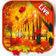 Autumn Leaves Live Wallpaper Android apk