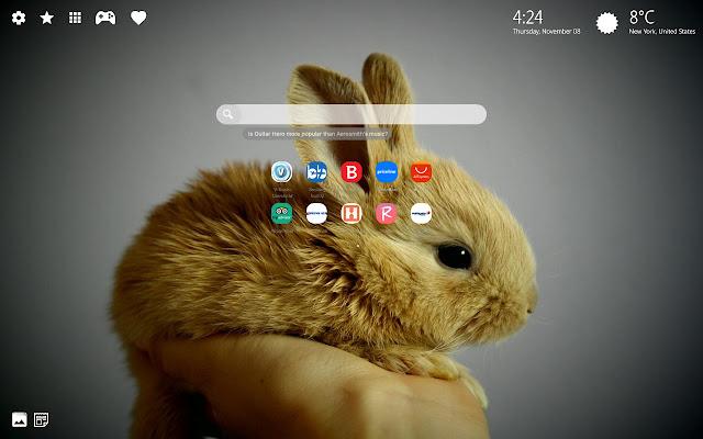 Bunny Rabbit Wallpaper