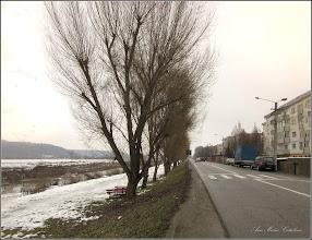 Photo: Turda - Str. Constructorilor si dig - 2019.01.26