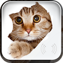 Animal sounds: picture & sound icon