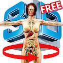 Female Anatomy 3d icon