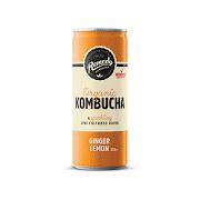 Kombucha Can 250ml Ginger Lemon