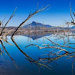 Riflessi by Pasquale Bimonte - Landscapes Waterscapes