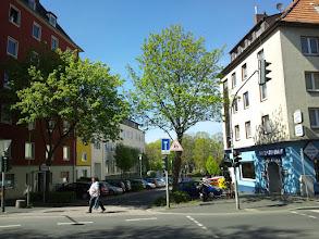 Photo: Blick von der Buscheystraße zum Buscheyfriedhof.
