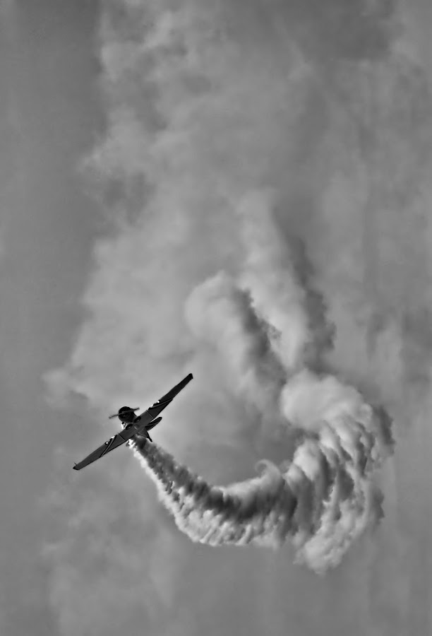 making clouds by Tony Babcock - Transportation Airplanes ( canon, smoke cloud, warbird, tony, air, babcock, 50d, smokem plane )