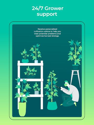 HiGrade: THC Testing & Cannabis Growing Assistant 1.0.296 screenshots 12