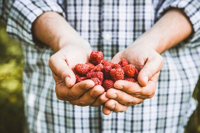 benefits of raspberries for men