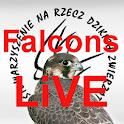 Falcons Live Poland icon