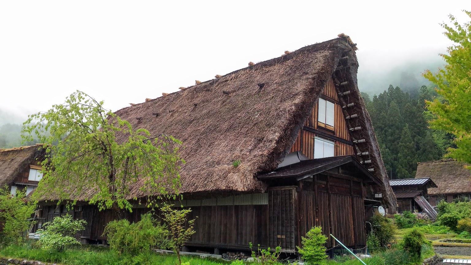 「日本 北陸高地森林保護區」的圖片搜尋結果