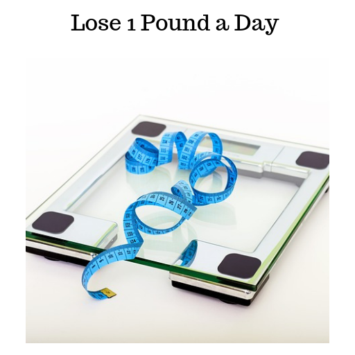 Lose 1 Pound a Day hack tool