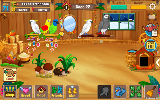 Bird Land Paradise: Pet Shop Game, Play with Bird  {cheat|hack|gameplay|apk mod|resources generator} 3