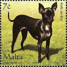 Photo: Malta