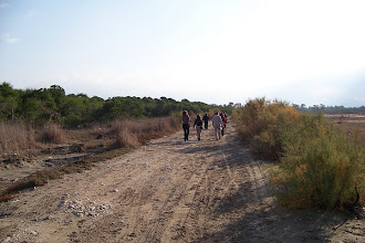 Photo: Patara Kumulu - 12.11.2011 (Sn.Vardar ACAN tarafından çekilmiştir.)