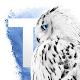 Tribal Edge WBL Download on Windows
