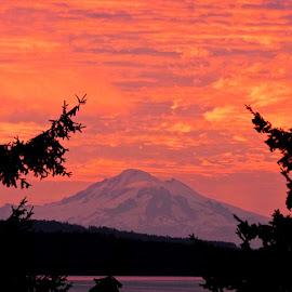 Salish Sea Sunrise IV by Campbell McCubbin - Landscapes Sunsets & Sunrises ( sunrise, mountain, mt. baker, dawn, kulshan )