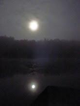 Photo: reflet de la lune sur l'étang de Lieschbach