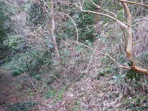 登り口(右)の様子